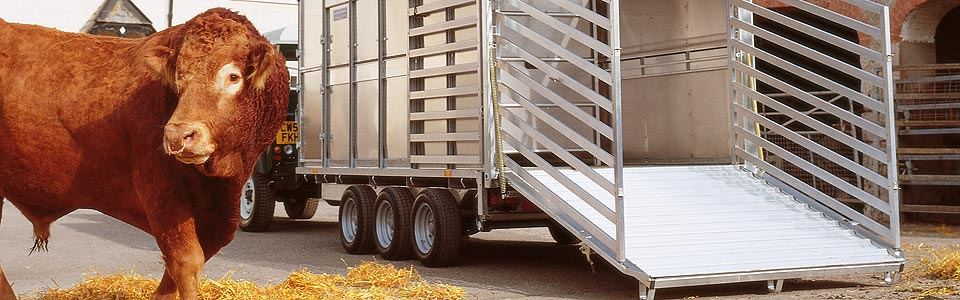Large livestock trailers